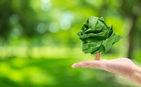 Bonos verdes cambian la perspectiva