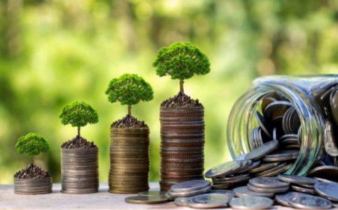 Qué debo saber de los bonos verdes