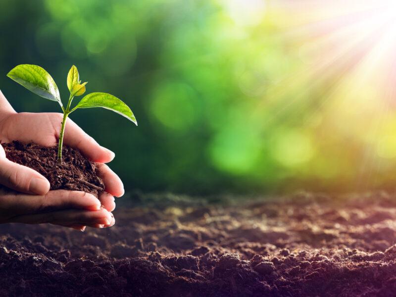 Bid Invest revisa sus políticas ambientales y sociales